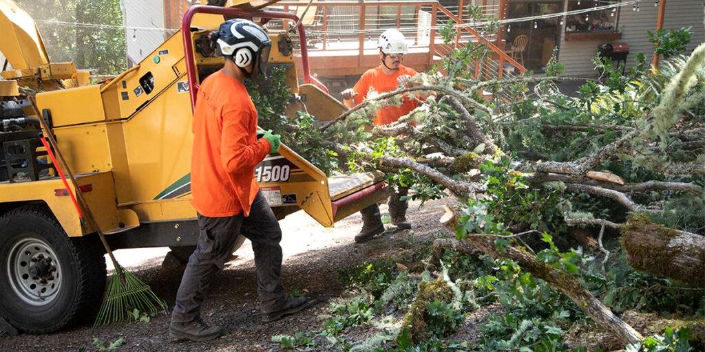 preventing winter storm damage